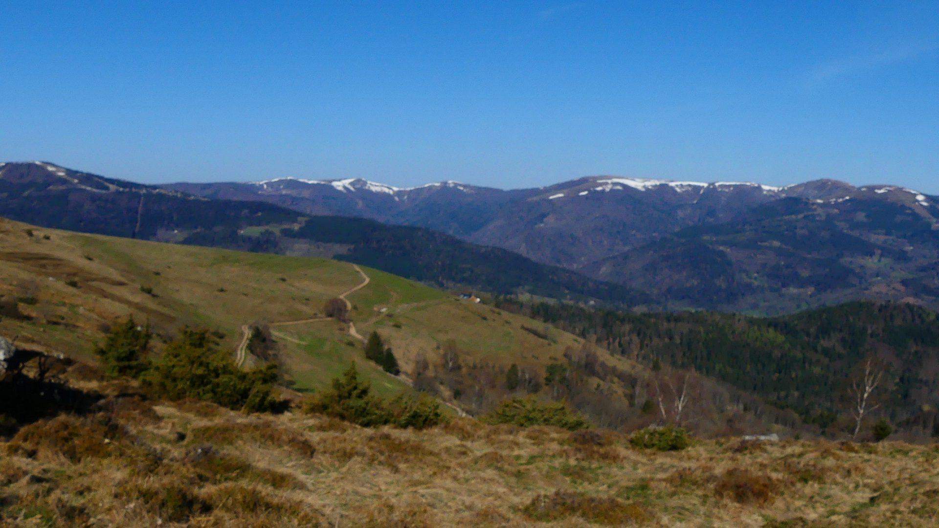 Vosges - Pompes Funebres de la vallée de Munster - France Obsèques